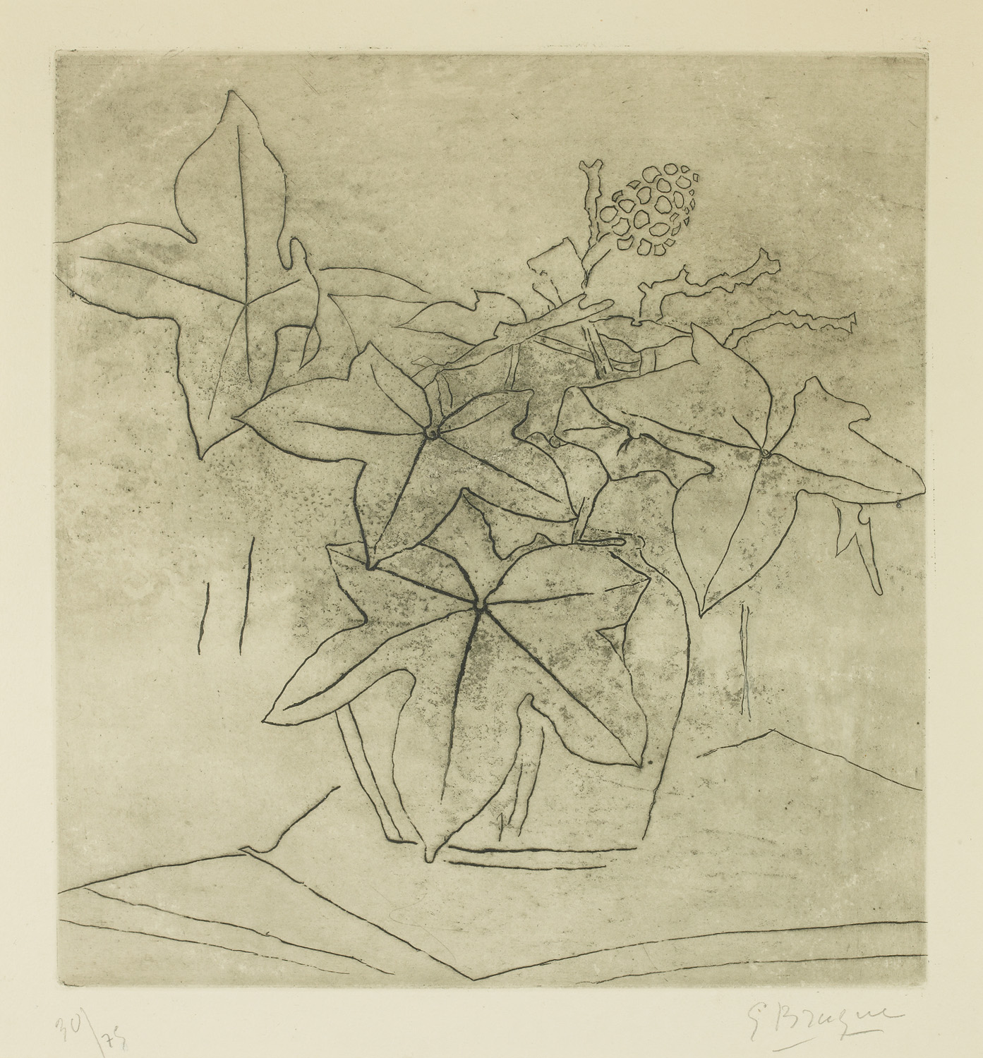 Georges Braque, Le Lierre, etching, 1955
